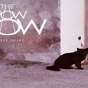 The PowPow: Past Shame ★★★☆☆☆