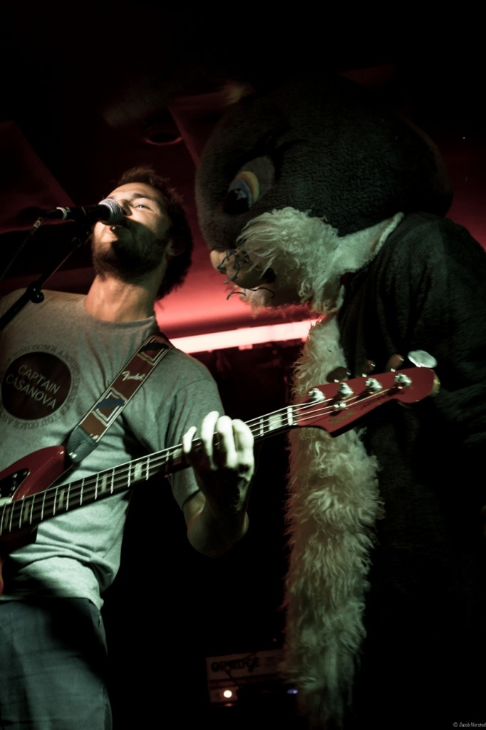 Bassist F. Dybjerg nedstirres af kanin